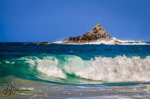 Hahei_Beach