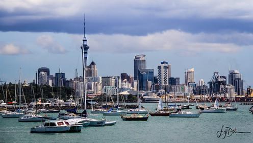 Auckland_Skyline