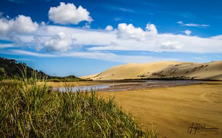 Sand_Dunes_behind_90_Miles_Beach