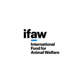 The International Fund for Animal Welfare