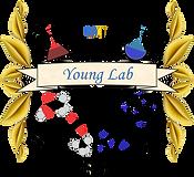 YoungLab_v4.png
