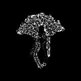 Logo quimera sem nome  1.png