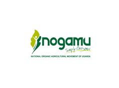 NOGAMU4.png