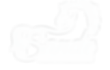 Sande_Logo_finalwhite (2).png