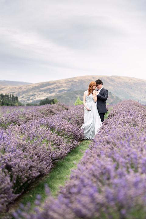 Lavender Farm - Engagament Photos - New Zealand - International Wedding Photographer MacCoy Dean