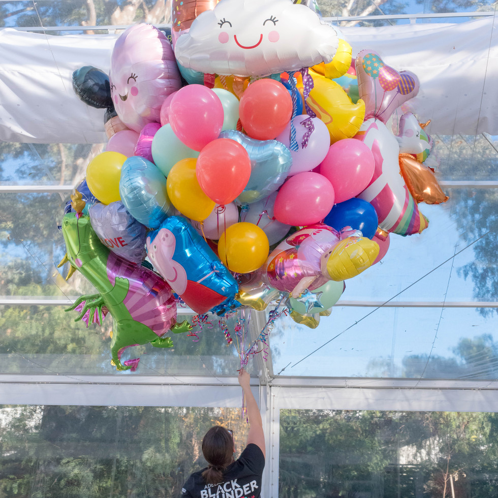 balloon garland 2 (1 of 1).JPG