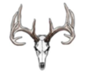 deer Euro.jpg
