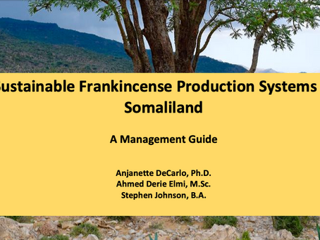 Sustainable Frankincense Production Systems in Somaliland