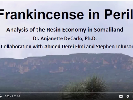 Analysis of Resin Economy in Somaliland (By: Dr. Anjanette DeCarlo, Ph.D)