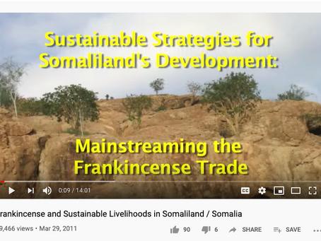 Frankincense and Sustainable Livelihoods in Somaliland / Somalia