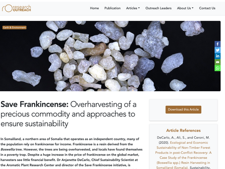 Save Frankincense: Overharvesting of a precious commodity and approaches to ensure sustainability