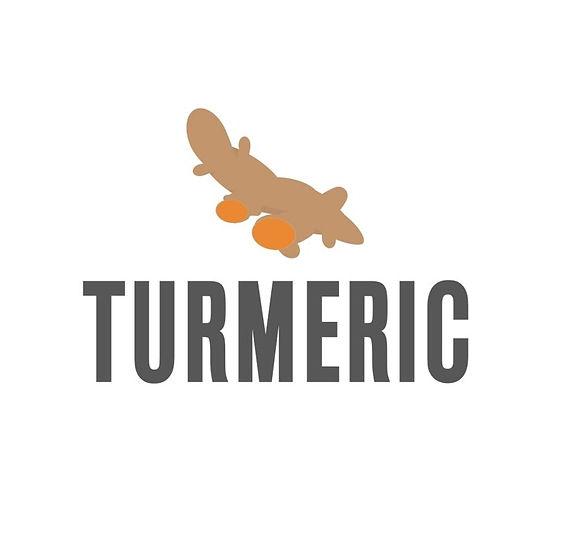Turmeric Essential Oil icon