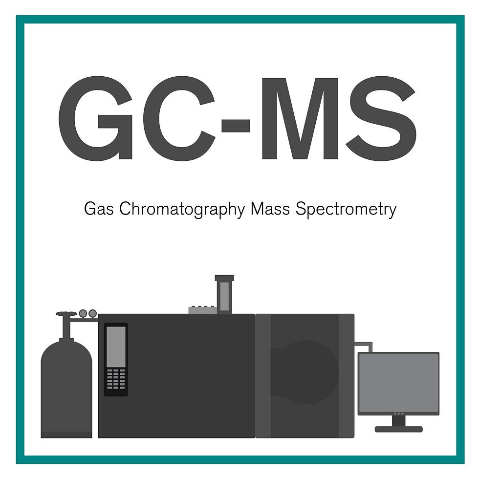 GC-MS Machine diagram