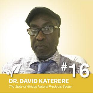 RA016-David-Katerere_Thumbnail-v1-100.jpg