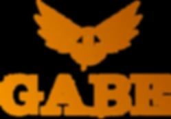GABE_kleur.png