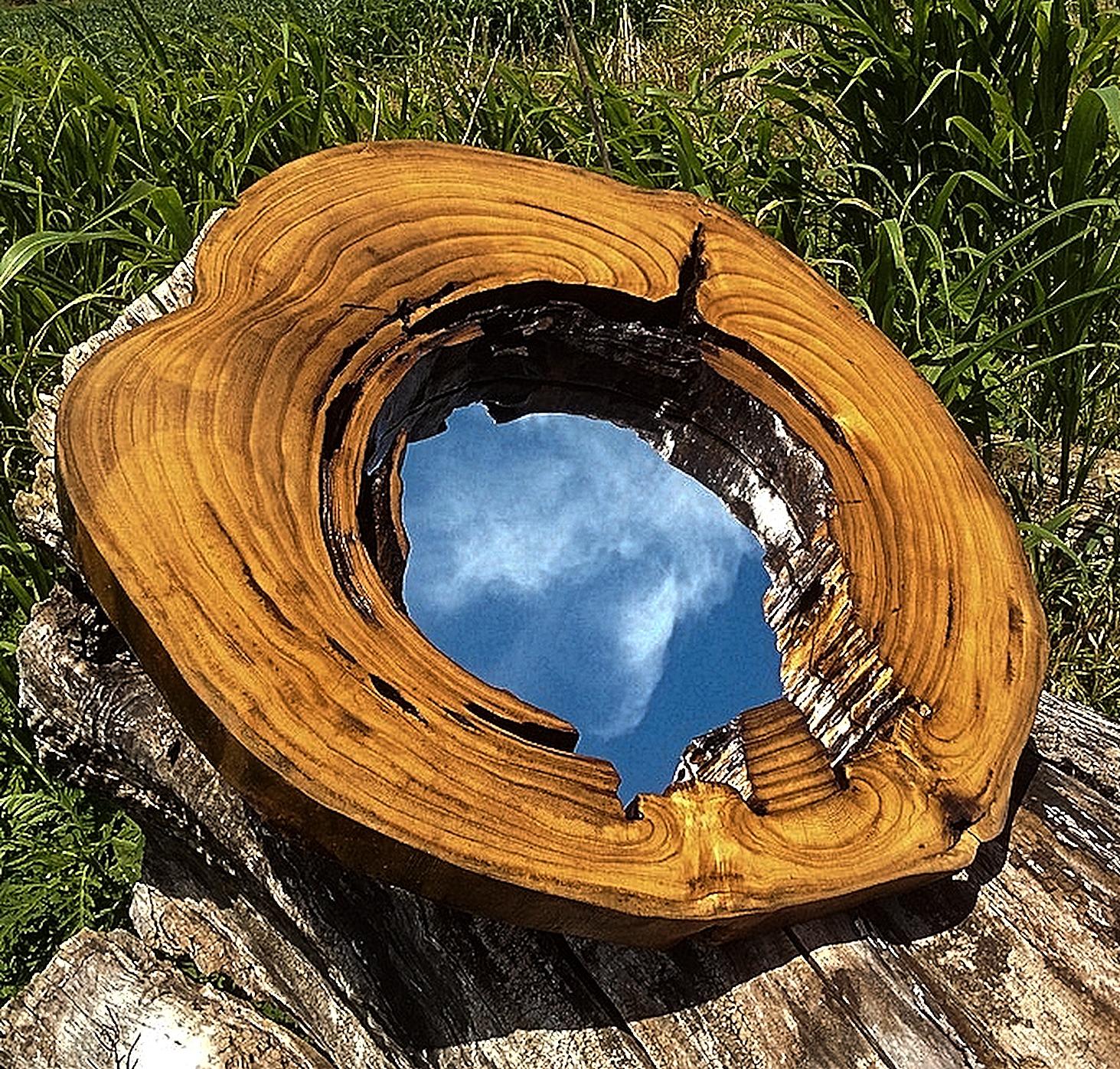 Paulownia Mirror