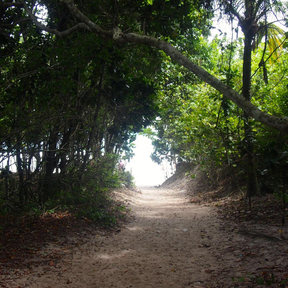 Sentier jusqu'à Lopez Mendes