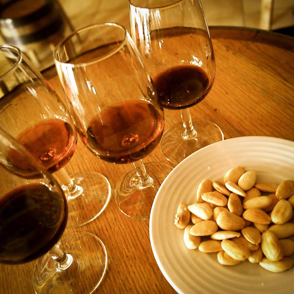 Dégustation de vins Taylor Porto