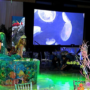 The underwater themed event at InterContinental Miami.