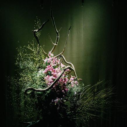 Contemporary dance session 〜BULLET×Cadenza【SHARE the】produced Yohei Suzuki