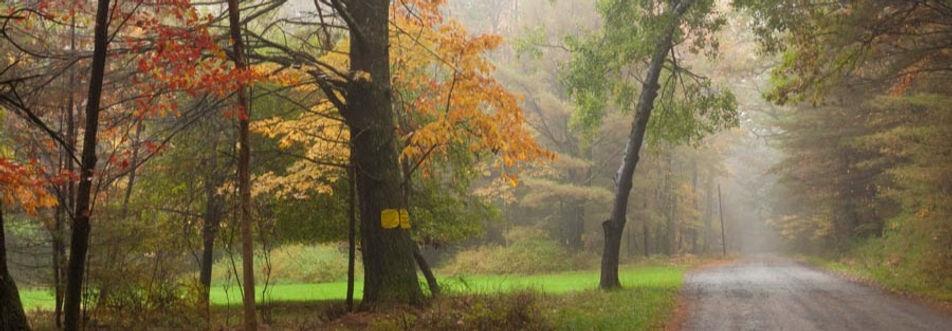 Koinonia-fall-48_edited_edited.jpg