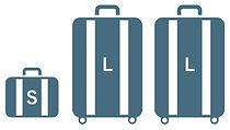 Luggage-ex.jpg