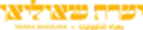 logotype2-black_edited.png