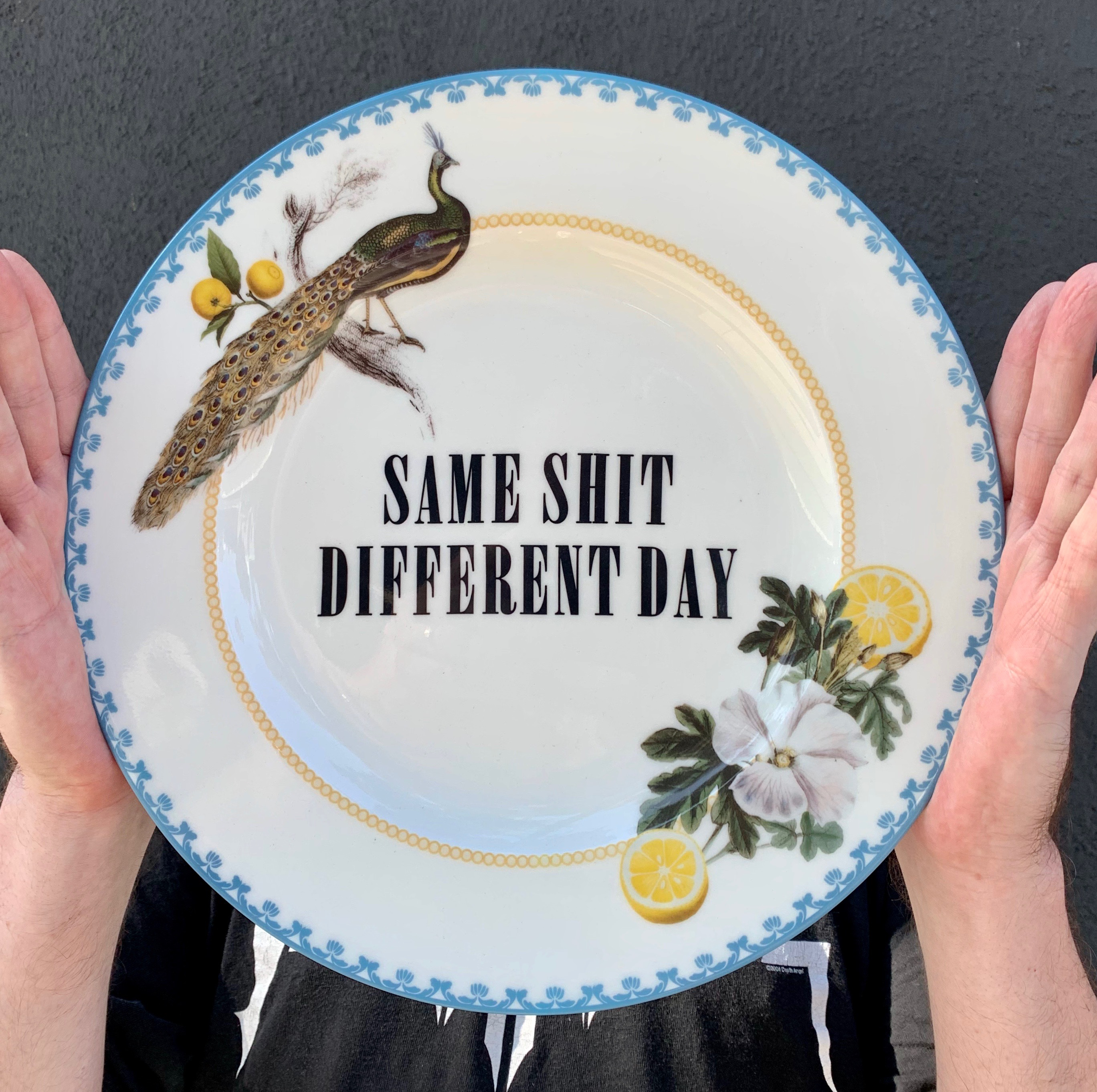 Same Shit, Diffrent Day - Custom Printed Ceramic Plate Edition