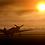 """Thumbnail: P-40 """"Warhawk"""" Sunrise"""