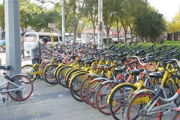 日本では駐輪ポートでの使用が前提。1箇所につき5~10台の自転車が配置されている