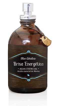 BRISA ENERGÉTICA