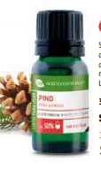 PINO AL 50% PINUS SYLVESTRIS