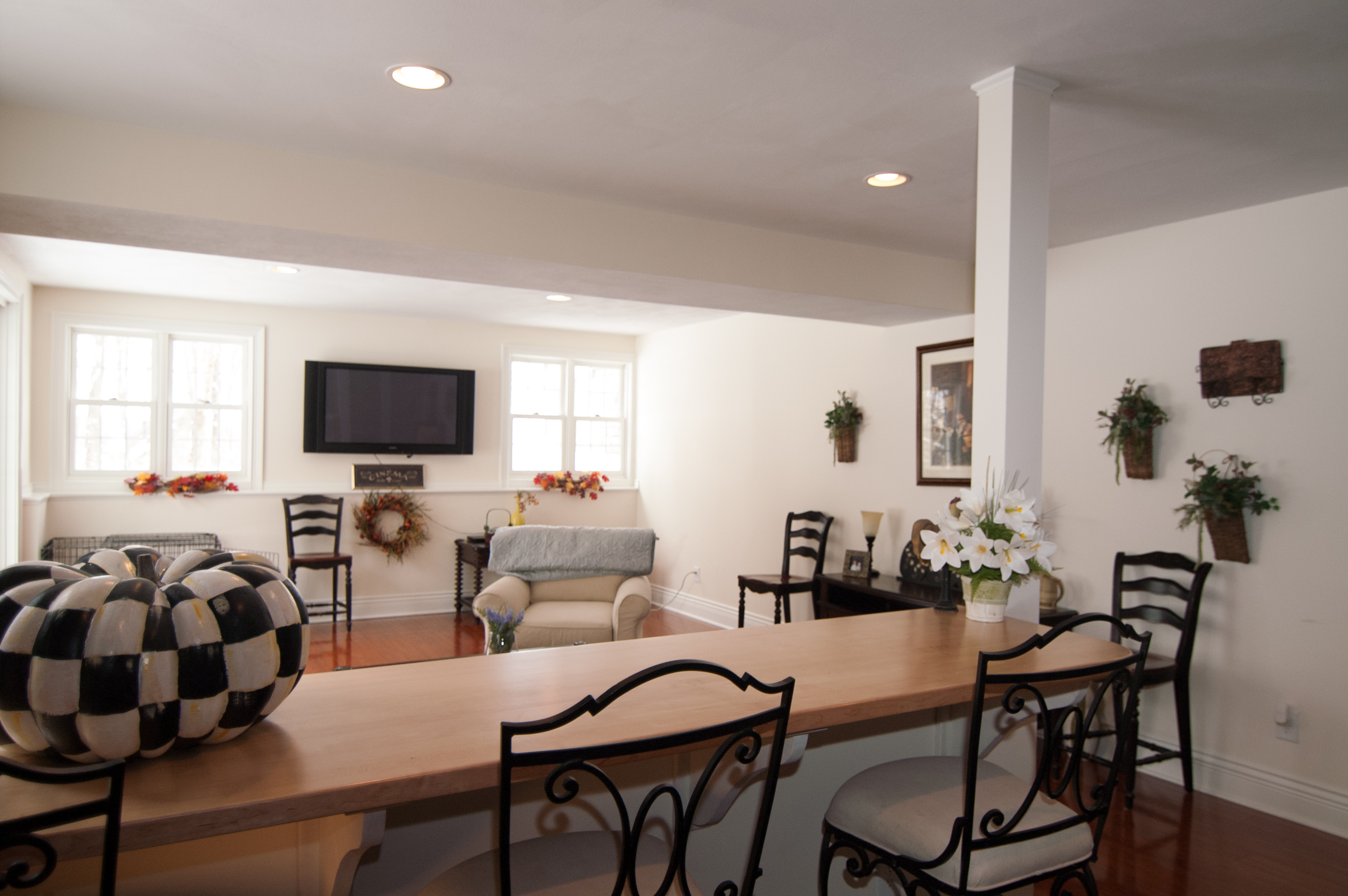 McDonough Residence Basement