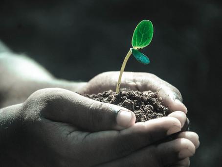 A megújító élet 7 alapelve (nem csak gazdáknak)