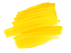 yellow frame-15.png