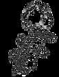 Reedy Orchestra Logo - Lion Head (Transp