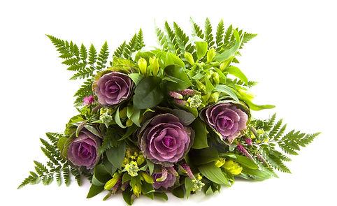 Purple_Flowers_Isolated.jpg