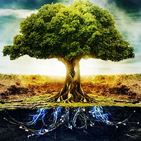 tree-life.jpg