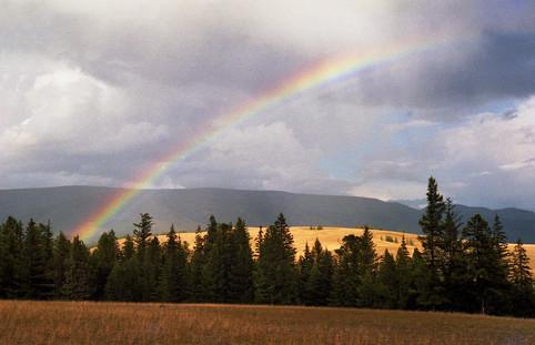 Радуга в Курайской степи. Горный Алтай. 14.08.2006