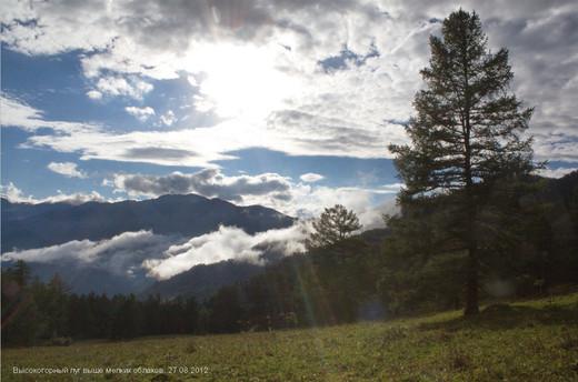 Высокогорный луг выше мелких облаков.27.08.2012