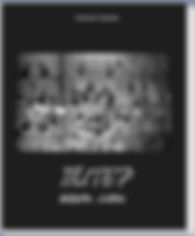 альбом Fotofaber, альбом Трива, фотоальбом, советская фотография, Соколаев Владимир