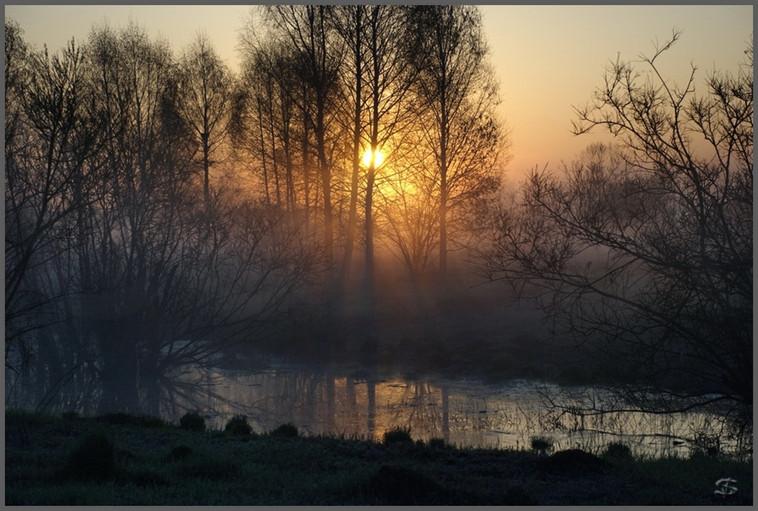 Рассветный туман на гравийных карьерах. Санитарная зона Запсиба в долине реки Томи. 8.05.2009