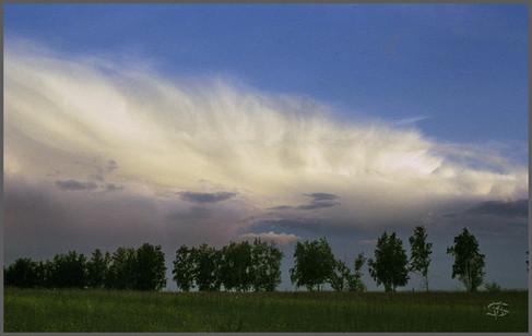Облака над лесополосой. Окрестности озера Стрижевое. Хакасия