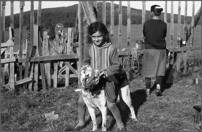 Девочка с молодой собакой