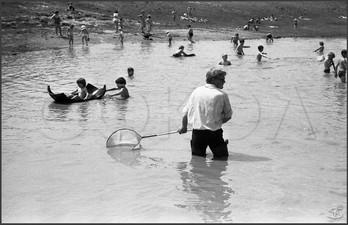 Ловля дафний - корма для аквариумных рыбок. Городской ипподром Барнаула. 12 06 1983