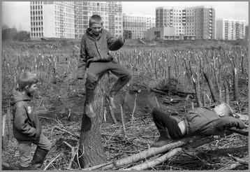 Трое на вырубках - Саша, Володя, Валера. 8.05.1987