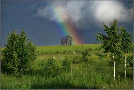 Край радуги. Окрестности села Бедарево. Новокузнецкий район. 18.06.2009