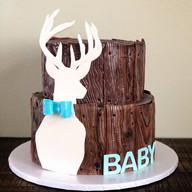 Oh Deer, it's a Boy!
