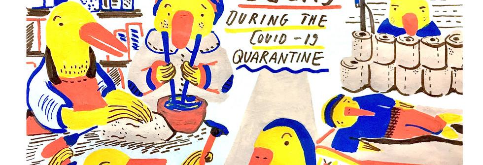 Ducks and their quarantine routines