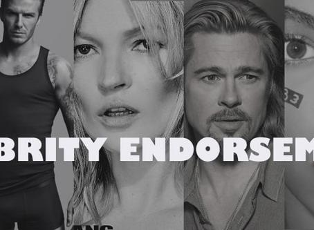 The Power of Celebrity Endorsement - Elena Corres